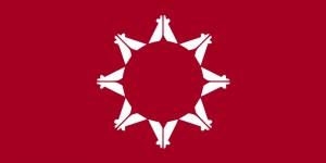 pine ridge flag